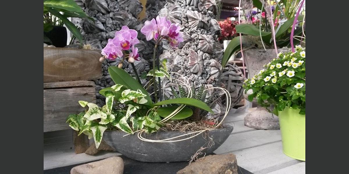 troisdorf city bepflanzte schalen bei der g rtnerei stelter g rtnerei stelter. Black Bedroom Furniture Sets. Home Design Ideas